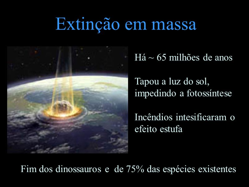 Extinção em massa Há ~ 65 milhões de anos Tapou a luz do sol, impedindo a fotossíntese Incêndios intesificaram o efeito estufa Fim dos dinossauros e d