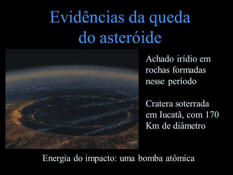 Evidências da queda do asteróide Achado irídio em rochas formadas nesse período Cratera soterrada em Iucatã, com 170 Km de diâmetro Energia do impacto