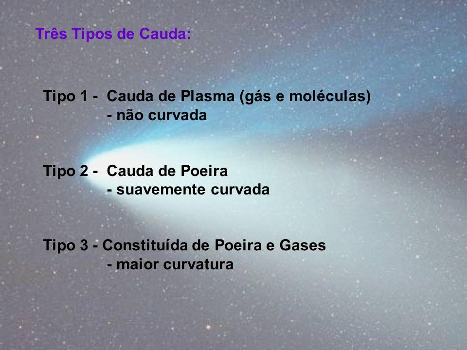 Três Tipos de Cauda: Tipo 1 - Cauda de Plasma (gás e moléculas) - não curvada Tipo 2 - Cauda de Poeira - suavemente curvada Tipo 3 - Constituída de Po