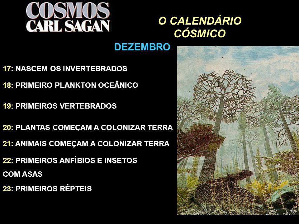 O CALENDÁRIO CÓSMICO 18: PRIMEIRO PLANKTON OCEÂNICO 19: PRIMEIROS VERTEBRADOS 20: PLANTAS COMEÇAM A COLONIZAR TERRA 21: ANIMAIS COMEÇAM A COLONIZAR TE