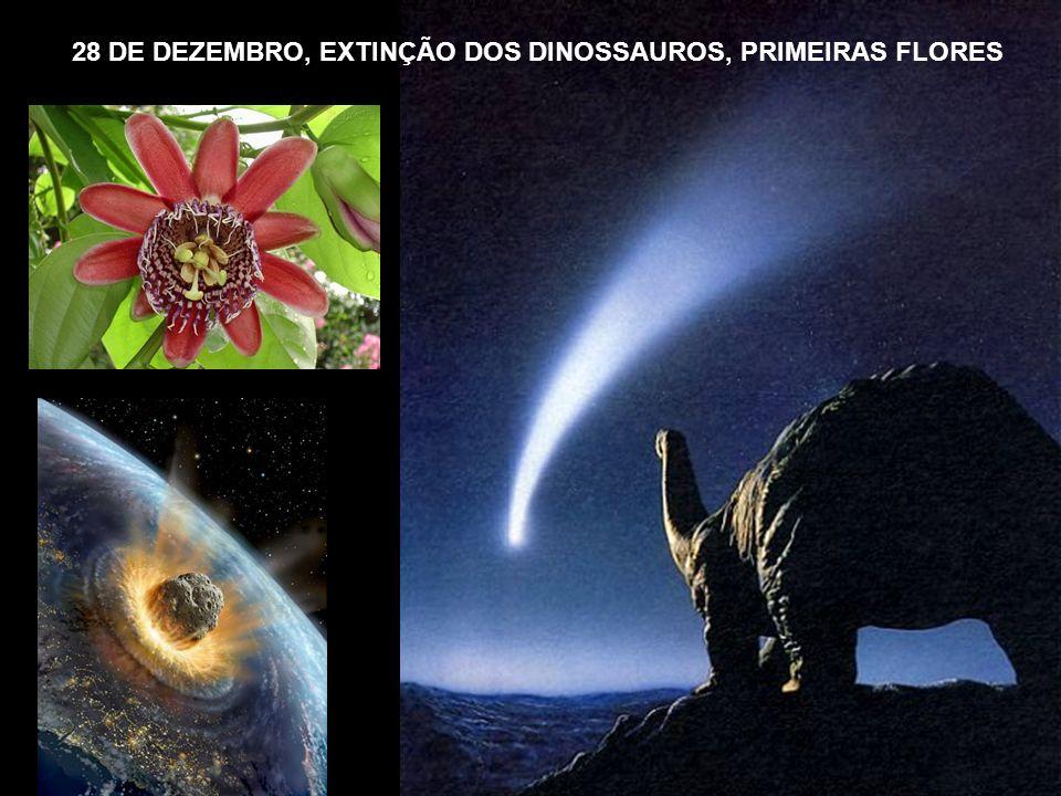 28 DE DEZEMBRO, EXTINÇÃO DOS DINOSSAUROS, PRIMEIRAS FLORES