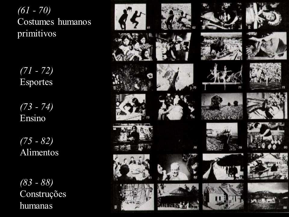 (61 - 70) Costumes humanos primitivos (71 - 72) Esportes (73 - 74) Ensino (75 - 82) Alimentos (83 - 88) Construções humanas
