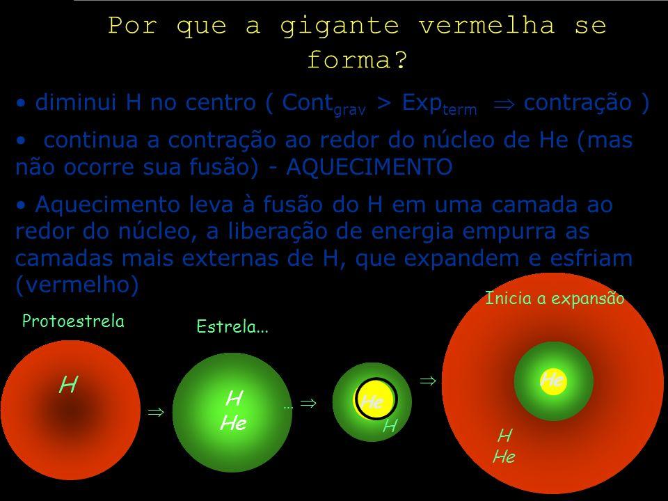 Por que a gigante vermelha se forma? diminui H no centro ( Cont grav > Exp term contração ) continua a contração ao redor do núcleo de He (mas não oco