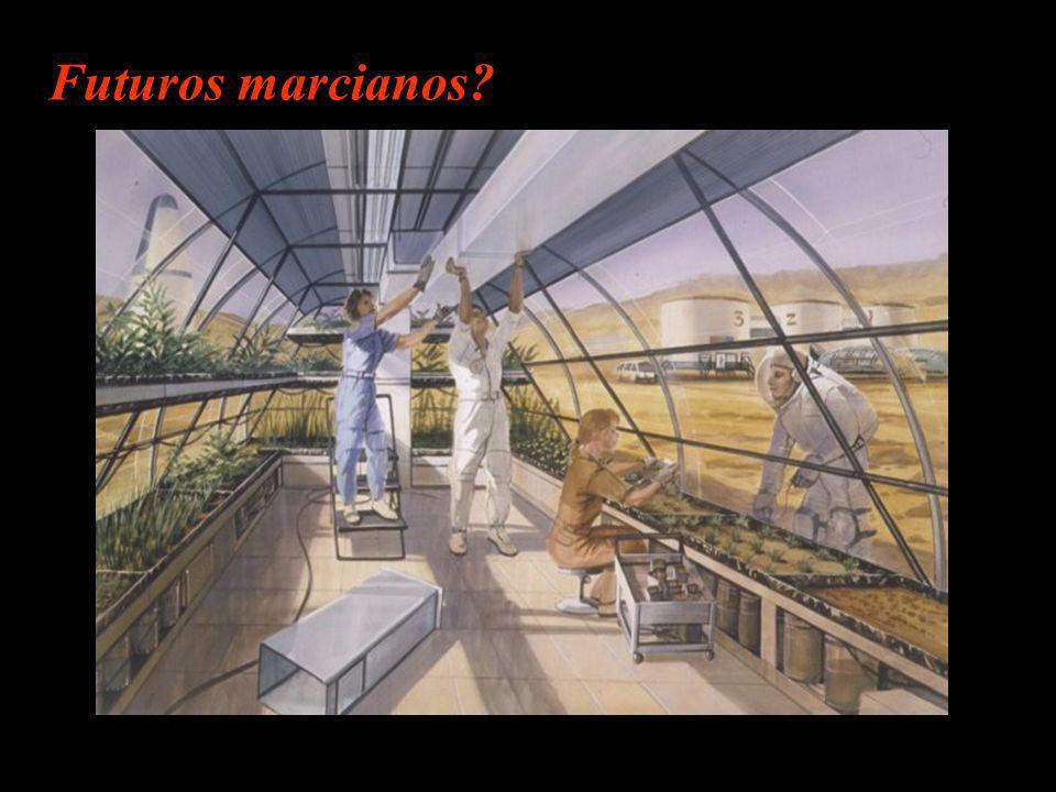 Conclusões finais a respeito de vida Nada se pode afirmar com certeza absoluta sobre a vida em ambiente marciano Quando todas as opções forem descartadas e apenas uma única permaneça, por mais absurda que pareça, deve ser a verdadeira (Sherlock Holmes)