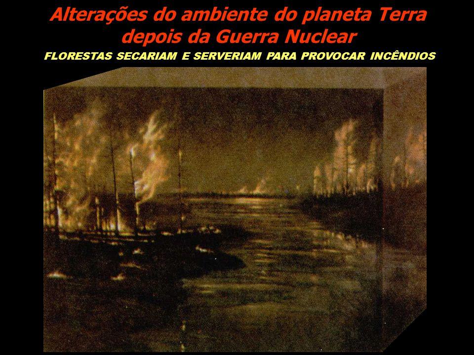 FLORESTAS SECARIAM E SERVERIAM PARA PROVOCAR INCÊNDIOS Alterações do ambiente do planeta Terra depois da Guerra Nuclear