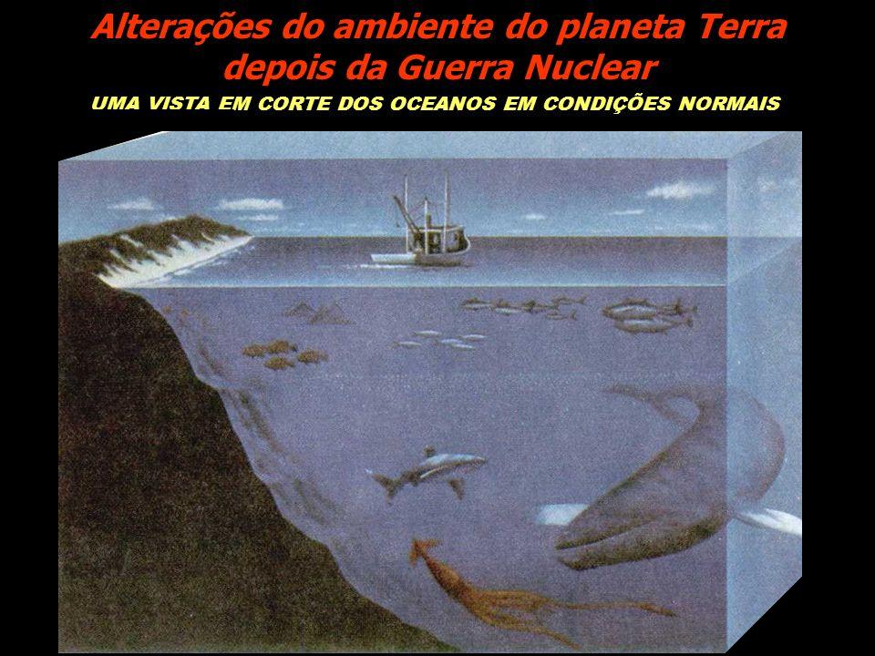 UMA VISTA EM CORTE DOS OCEANOS EM CONDIÇÕES NORMAIS Alterações do ambiente do planeta Terra depois da Guerra Nuclear
