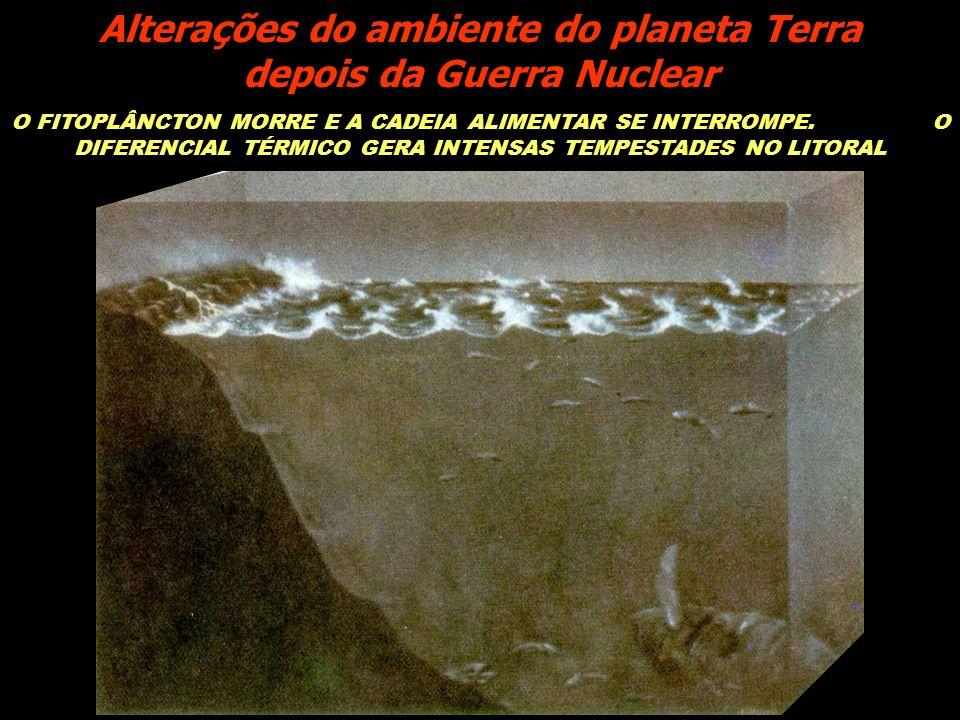 O FITOPLÂNCTON MORRE E A CADEIA ALIMENTAR SE INTERROMPE. O DIFERENCIAL TÉRMICO GERA INTENSAS TEMPESTADES NO LITORAL Alterações do ambiente do planeta