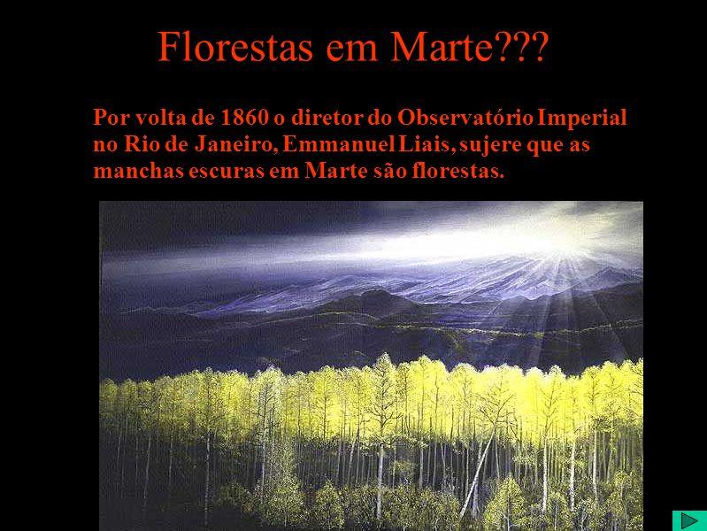 Florestas em Marte??.