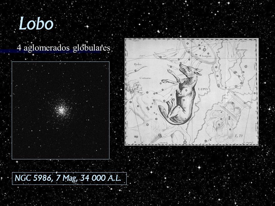 Lobo NGC 5986, 7 Mag, 34 000 A.L. 4 aglomerados globulares