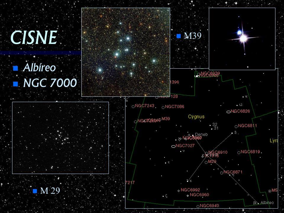 CISNE Albíreo Albíreo NGC 7000 NGC 7000 n M39 n M 29