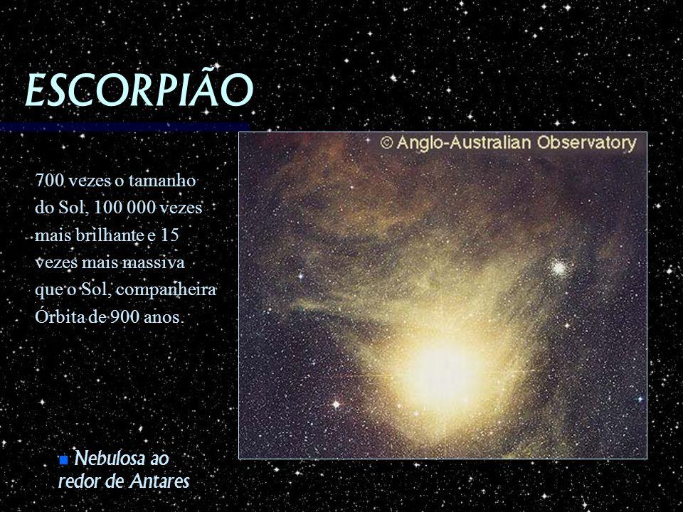 ESCORPIÃO Nebulosa ao redor de Antares Nebulosa ao redor de Antares 700 vezes o tamanho do Sol, 100 000 vezes mais brilhante e 15 vezes mais massiva q
