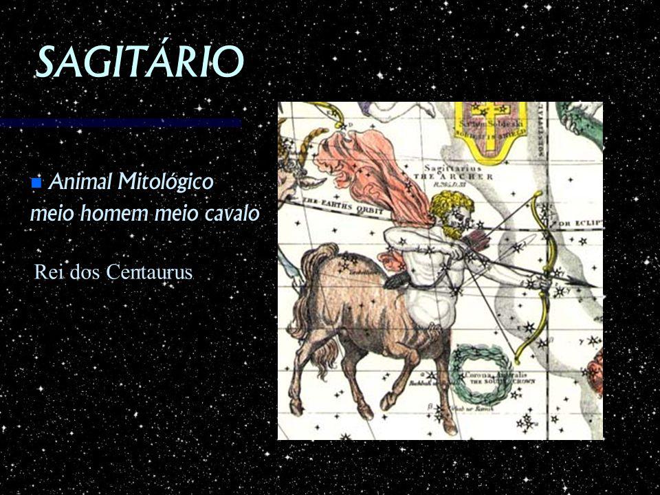 SAGITÁRIO Animal Mitológico Animal Mitológico meio homem meio cavalo Rei dos Centaurus