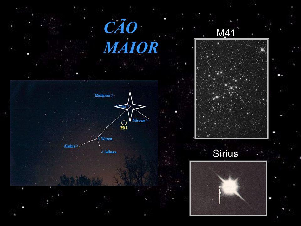 CÃO MAIOR Sírius M41