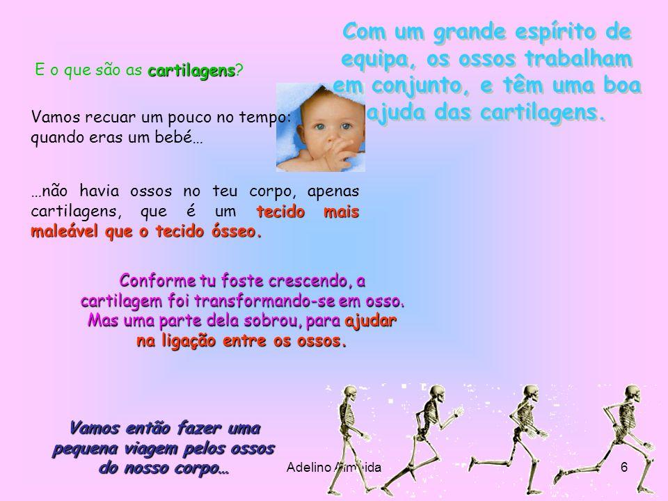 Adelino Almeida17