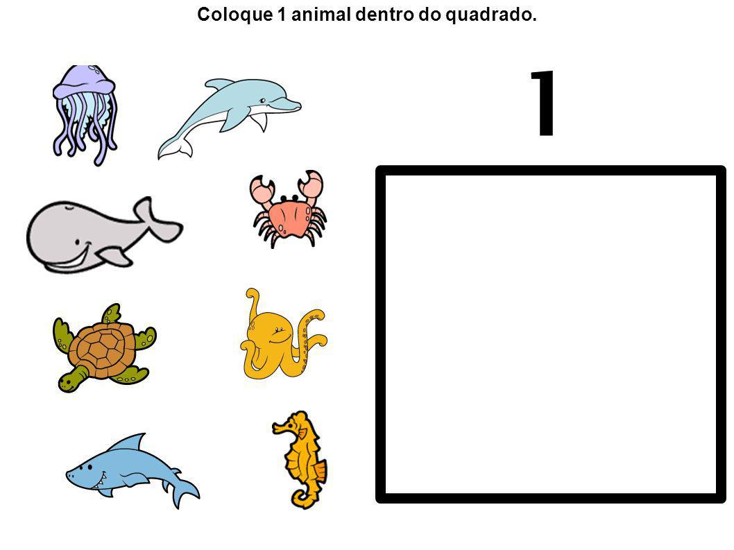 1 Coloque 1 animal dentro do quadrado.