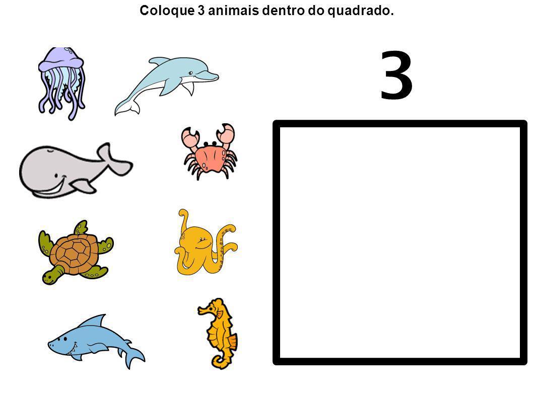 3 Coloque 3 animais dentro do quadrado.