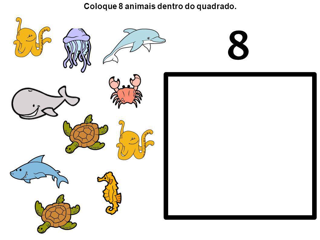8 Coloque 8 animais dentro do quadrado.