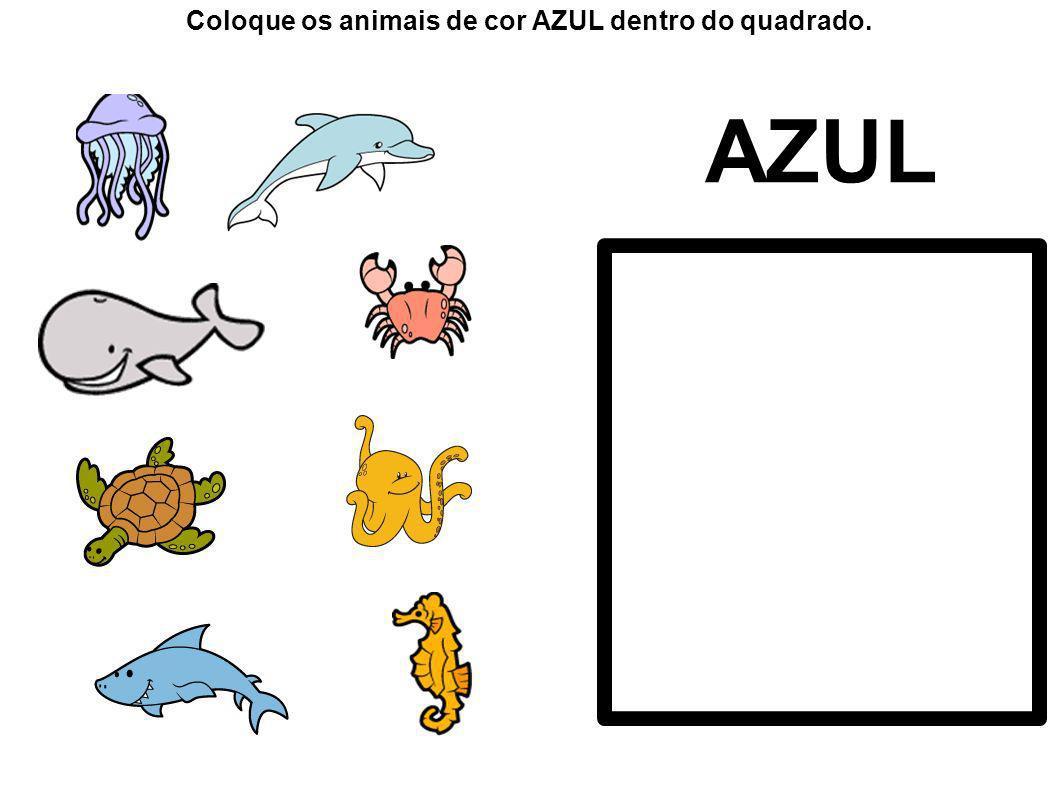 AZUL Coloque os animais de cor AZUL dentro do quadrado.