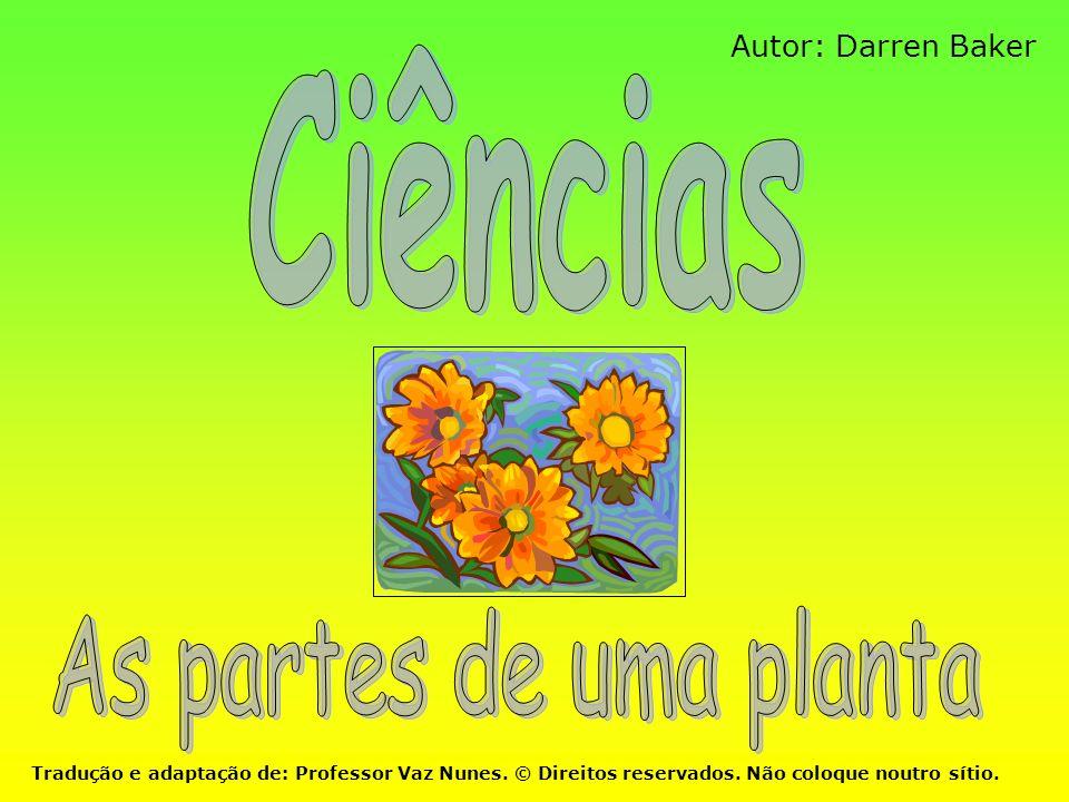 Autor: Darren Baker Tradução e adaptação de: Professor Vaz Nunes. © Direitos reservados. Não coloque noutro sítio.