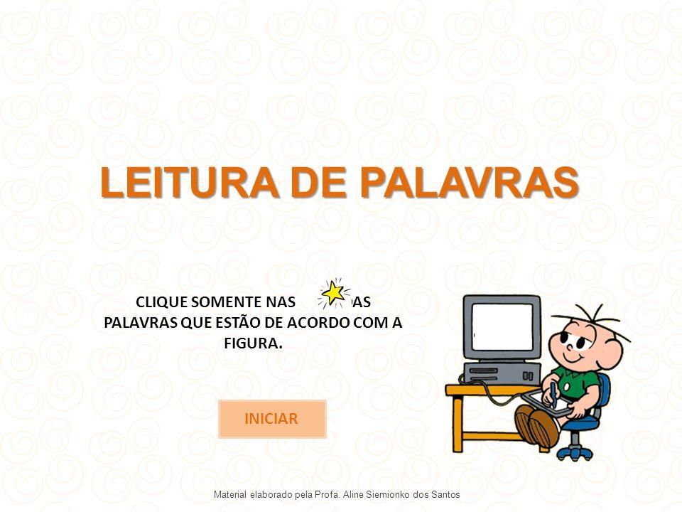 PANDA PORCO PALHAÇO