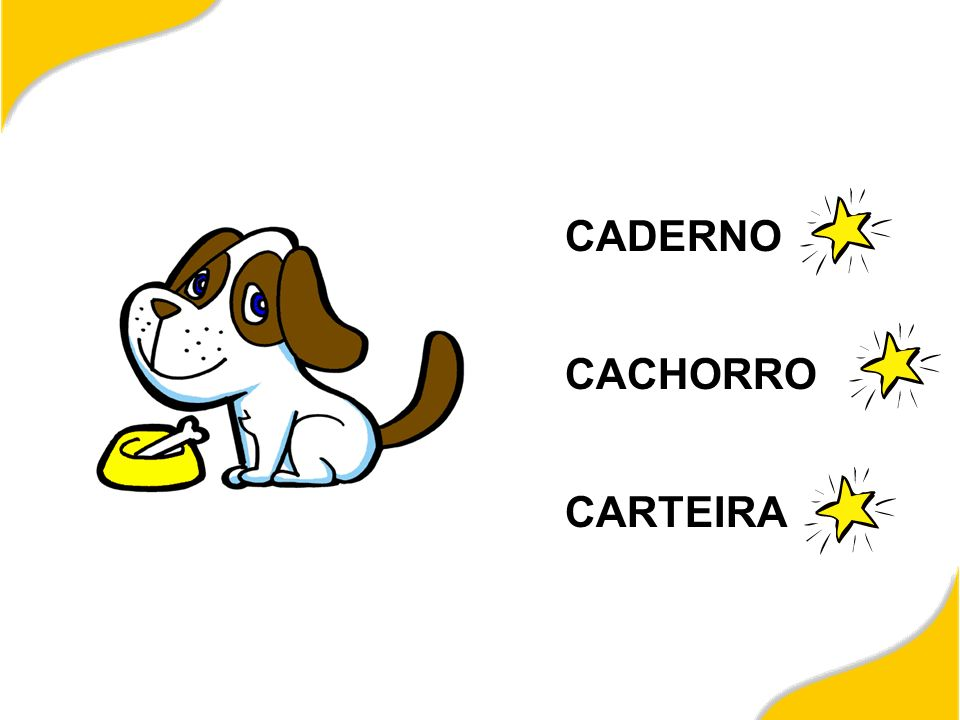 CADERNO CACHORRO CARTEIRA