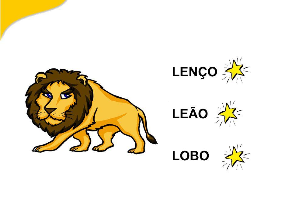 LENÇO LEÃO LOBO