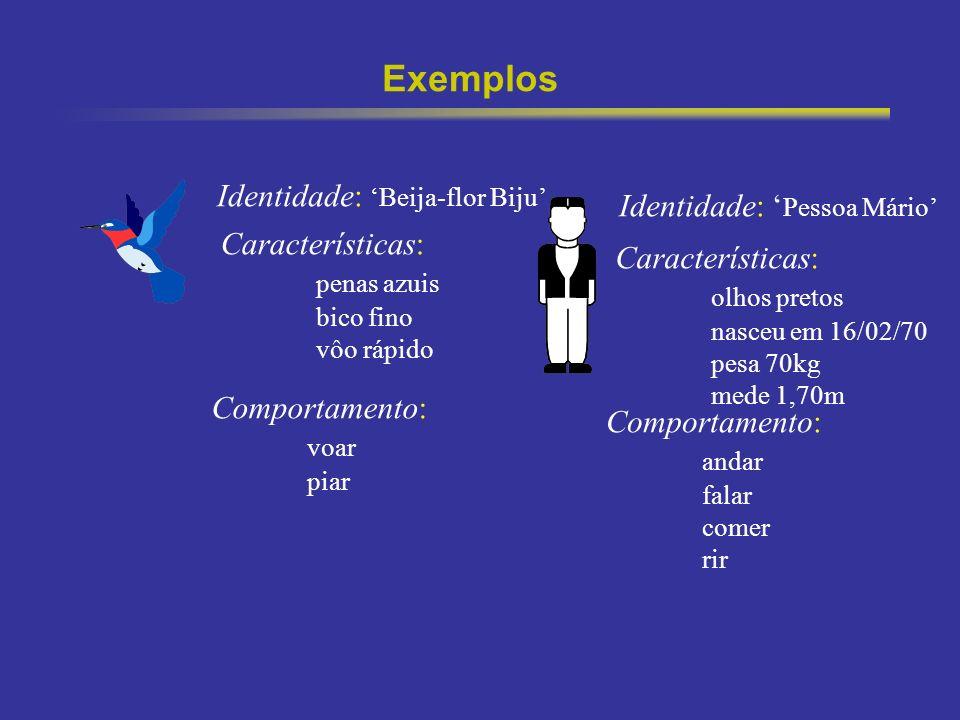 3 Exemplos Identidade: Beija-flor Biju Características: penas azuis bico fino vôo rápido Comportamento: voar piar Identidade: Pessoa Mário Característ