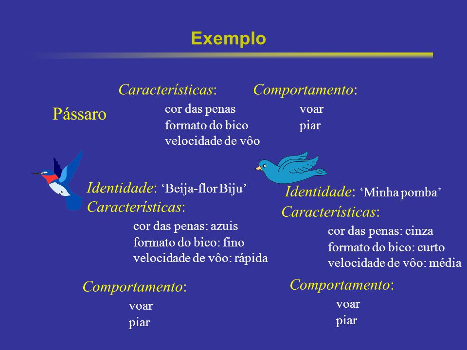 9 Exemplo Identidade: Beija-flor Biju Características: cor das penas formato do bico velocidade de vôo Comportamento: voar piar Pássaro Característica