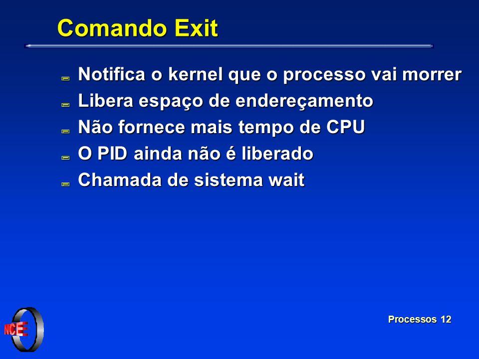 Processos 12 Comando Exit ; Notifica o kernel que o processo vai morrer ; Libera espaço de endereçamento ; Não fornece mais tempo de CPU ; O PID ainda