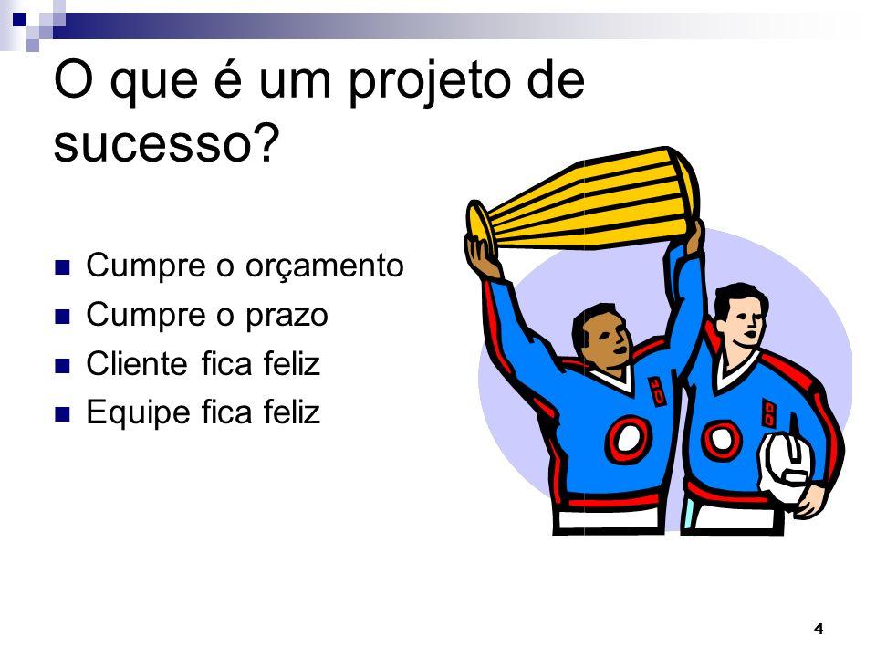 4 4 O que é um projeto de sucesso? Cumpre o orçamento Cumpre o prazo Cliente fica feliz Equipe fica feliz