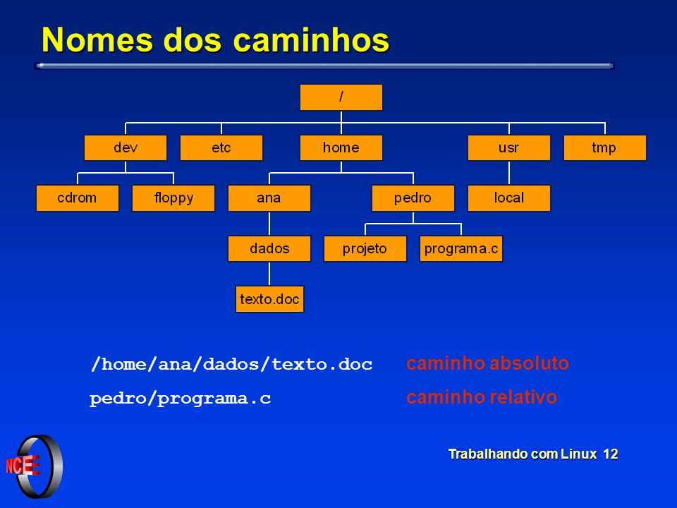 Trabalhando com Linux 12 Nomes dos caminhos /home/ana/dados/texto.doc caminho absoluto pedro/programa.c caminho relativo