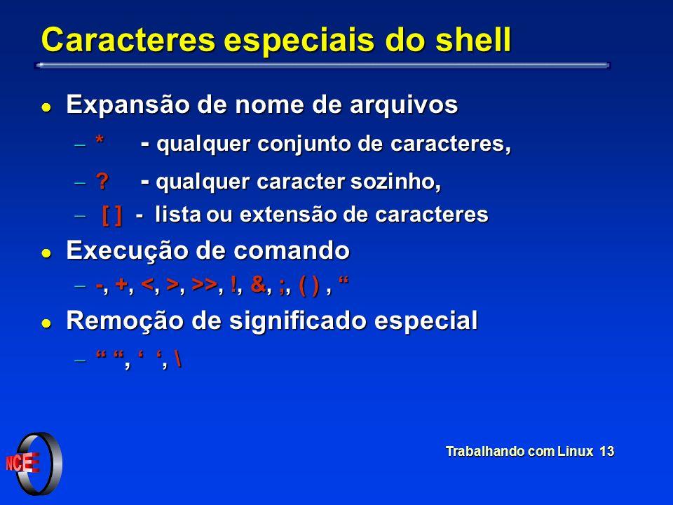 Trabalhando com Linux 13 Caracteres especiais do shell l Expansão de nome de arquivos * - qualquer conjunto de caracteres, * - qualquer conjunto de ca