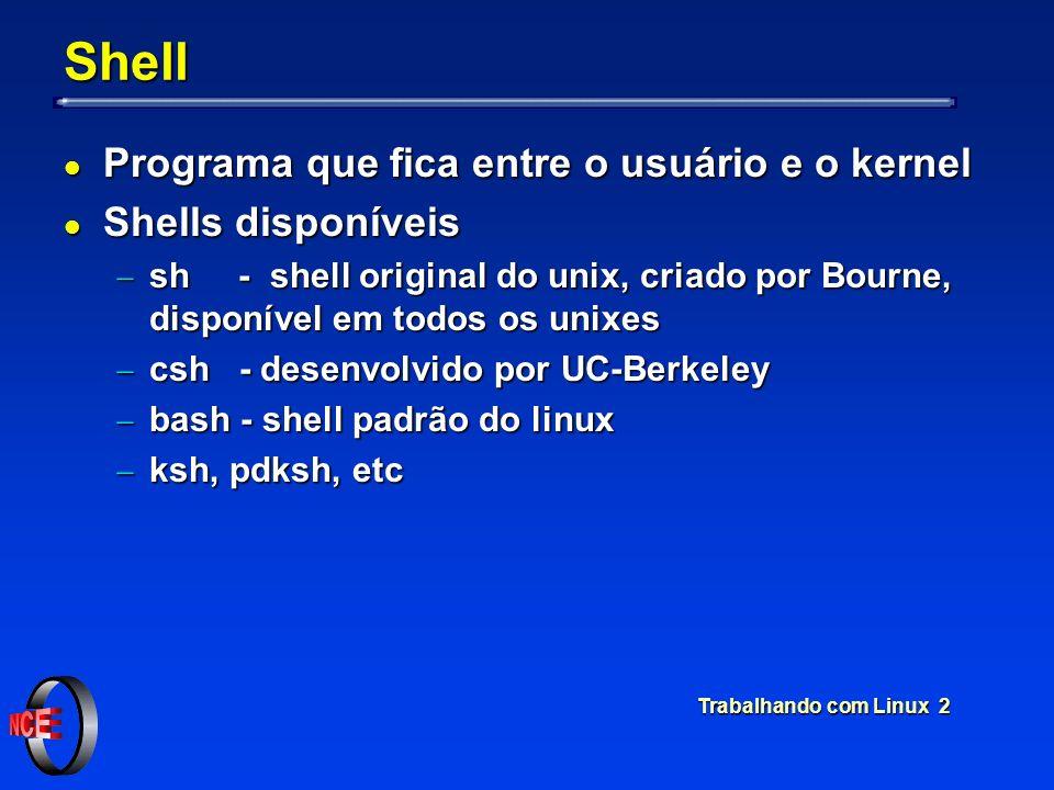 Trabalhando com Linux 2 Shell l Programa que fica entre o usuário e o kernel l Shells disponíveis sh - shell original do unix, criado por Bourne, disp