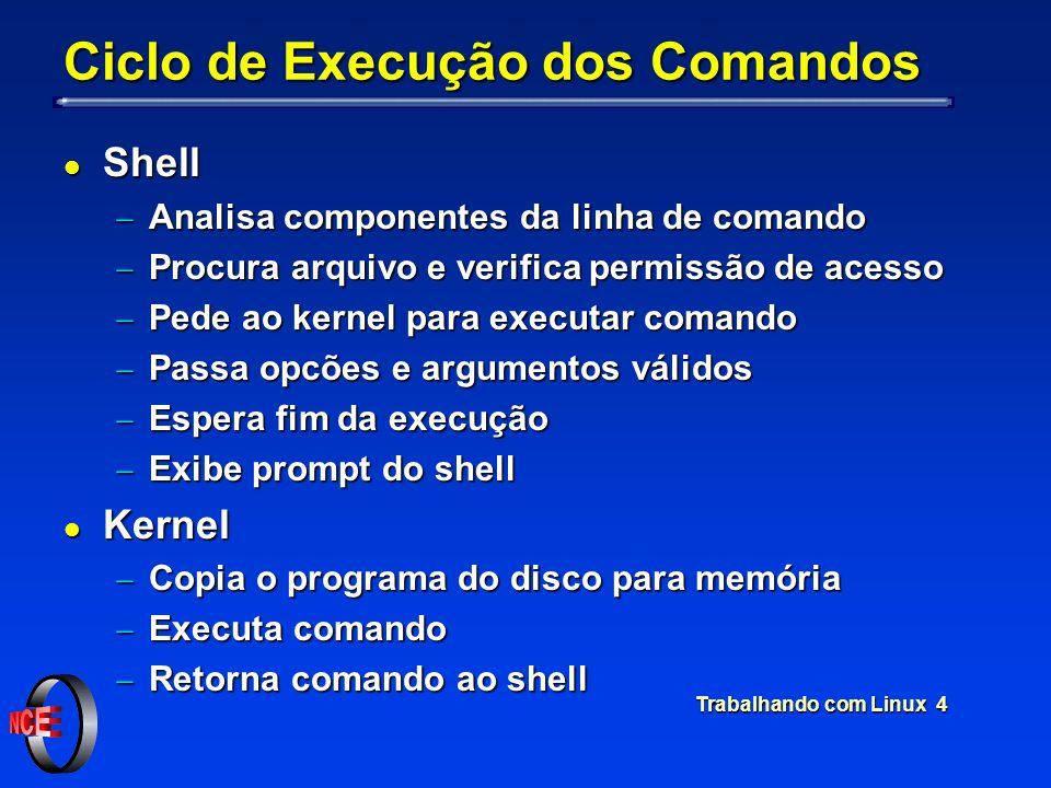 Trabalhando com Linux 4 Ciclo de Execução dos Comandos l Shell Analisa componentes da linha de comando Analisa componentes da linha de comando Procura