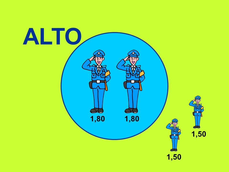 ALTO 1,80 1,50