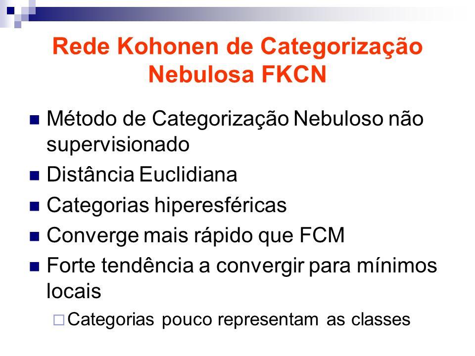 Rede Kohonen de Categorização Nebulosa FKCN Método de Categorização Nebuloso não supervisionado Distância Euclidiana Categorias hiperesféricas Converge mais rápido que FCM Forte tendência a convergir para mínimos locais Categorias pouco representam as classes