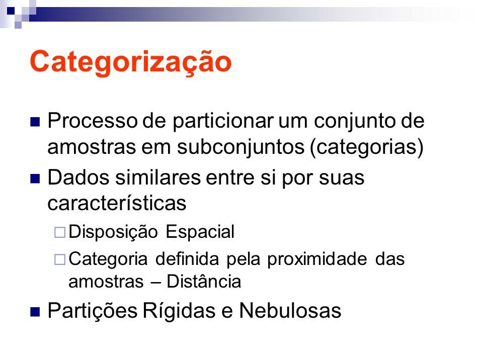 Categorização Processo de particionar um conjunto de amostras em subconjuntos (categorias) Dados similares entre si por suas características Disposiçã