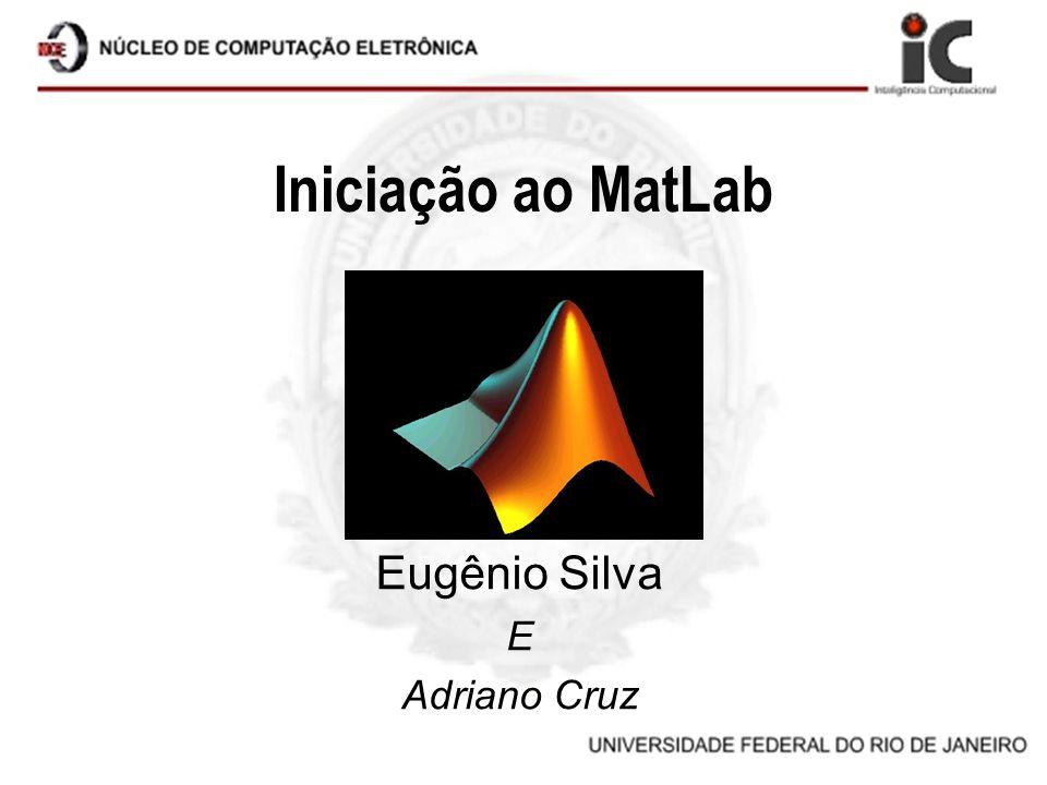 Iniciação ao MatLab Eugênio Silva E Adriano Cruz