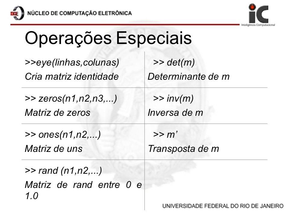 Operações Especiais >>eye(linhas,colunas) Cria matriz identidade >> det(m) Determinante de m >> zeros(n1,n2,n3,...) Matriz de zeros >> inv(m) Inversa
