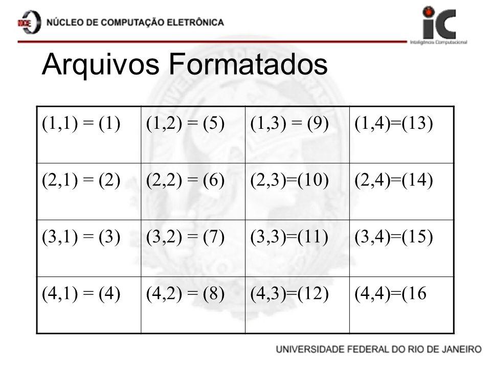 Arquivos Formatados (1,1) = (1)(1,2) = (5)(1,3) = (9)(1,4)=(13) (2,1) = (2)(2,2) = (6)(2,3)=(10)(2,4)=(14) (3,1) = (3)(3,2) = (7)(3,3)=(11)(3,4)=(15)
