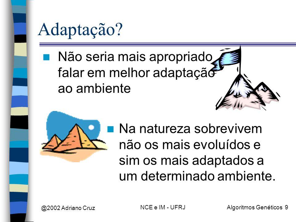 @2002 Adriano Cruz NCE e IM - UFRJAlgoritmos Genéticos 10 Adaptação n O conjunto de características de um indivíduo, que o distingue dos demais, determina sua capacidade de sobrevivência.