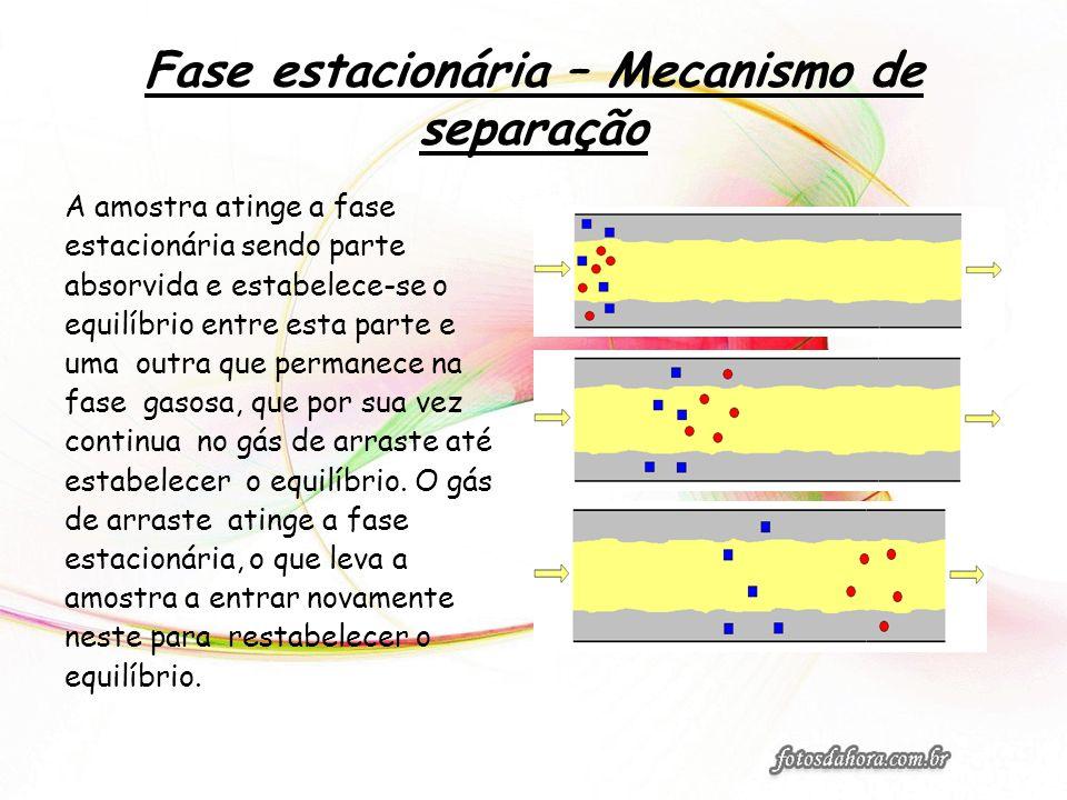 Fase estacionária – Mecanismo de separação A amostra atinge a fase estacionária sendo parte absorvida e estabelece-se o equilíbrio entre esta parte e