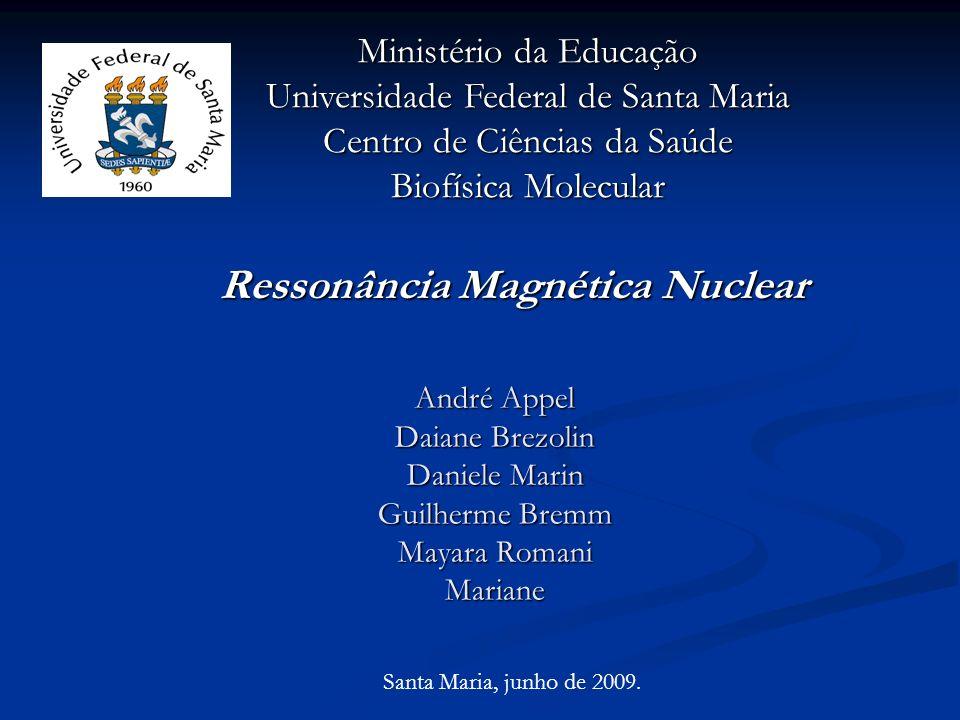 André Appel Daiane Brezolin Daniele Marin Guilherme Bremm Mayara Romani Mariane Ressonância Magnética Nuclear Ministério da Educação Universidade Fede
