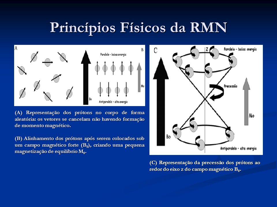 A aplicação de pulsos de radiofreqüência (RF) à amostra, faz com que os núcleos absorvam energia por ressonância e rompam o alinhamento com B 0.