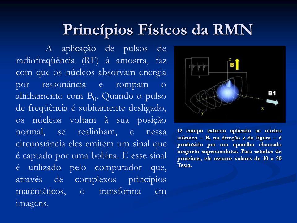 A aplicação de pulsos de radiofreqüência (RF) à amostra, faz com que os núcleos absorvam energia por ressonância e rompam o alinhamento com B 0. Quand