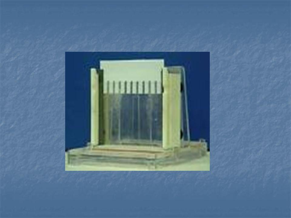 O gel de policrilamida pode ser: 1-Desnaturante : com presenca de ureia, separa e purifica fitas simples 2-Não desnaturante : separa e purifica fitas duplas, sem presenca de ureia