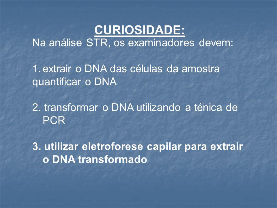 4-A análise via Reação em Cadeia da Polimerase (PCR) é uma técnica mais recente que pode transformar o DNA em uma amostra bem menor.