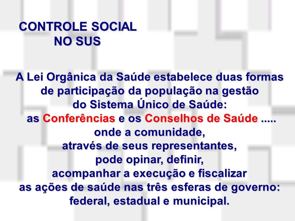 FLACH, Ângela.Controle social em saúde: possibilidades e limites.