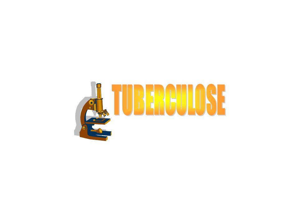 TUBERCULOSE Tuberculose Primária A doenca é adquirida pela exposicão inicial ao M.tuberculosis.