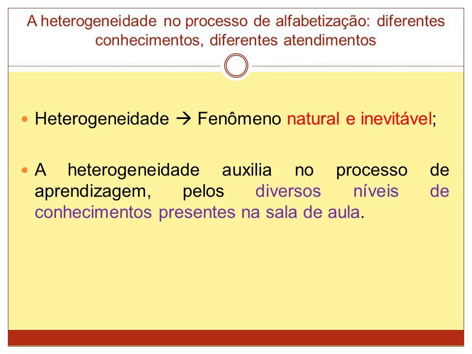 A heterogeneidade no processo de alfabetização: diferentes conhecimentos, diferentes atendimentos Heterogeneidade Fenômeno natural e inevitável; A heterogeneidade auxilia no processo de aprendizagem, pelos diversos níveis de conhecimentos presentes na sala de aula.